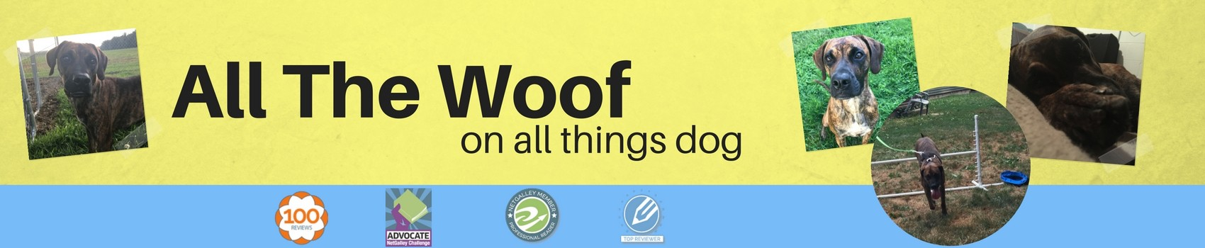 All the Woof