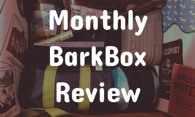 Monthly BarkBox Review: January