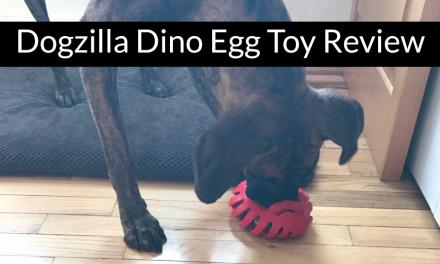 Dogzilla Dino Egg Toy Review